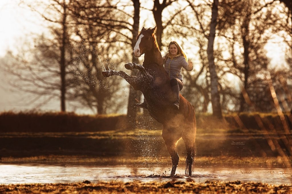 Steigendes Pferd im Wasser, Trickreiter
