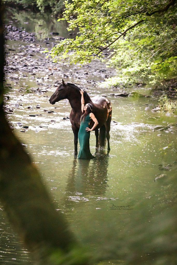 Pferd im Bach