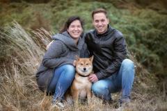 Shiba Inu mit Family