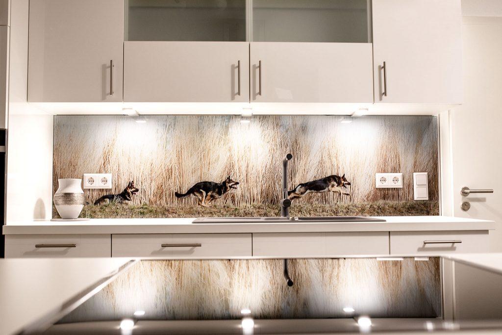 Individuelle Küchen Glasrückwand, Spritzschutz